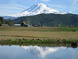 Photo of Mt. Adams